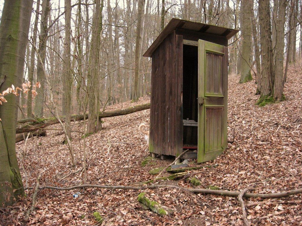 Homes - Toilet Loo Public Toilet Old Toilet