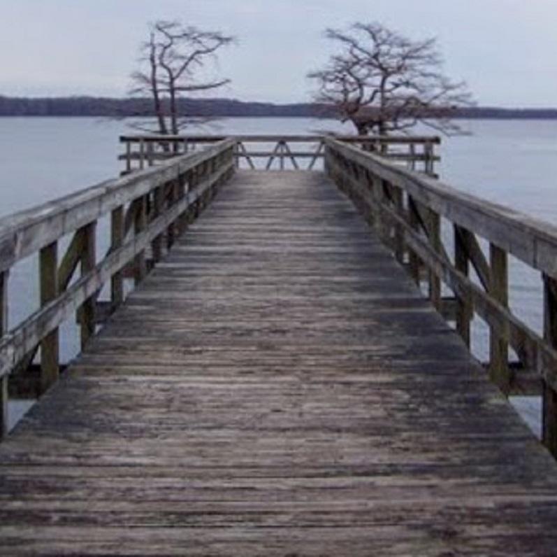 Reelfoot Lake wooden dock
