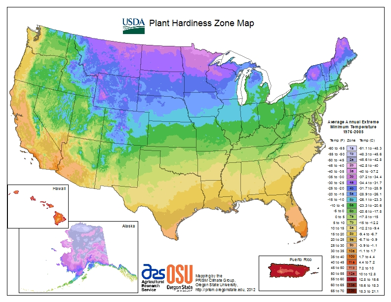 Photos on How to Find Your Plant Hardiness Zone