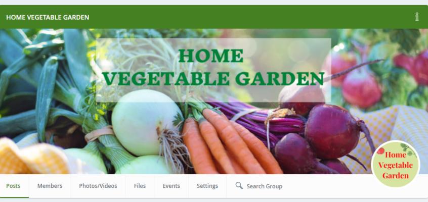 How the Home Vegetable Garden Blog Started